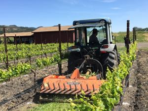 The tractor: Cultivating quality in the vineyards