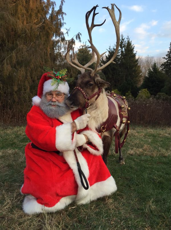 Crown Vet to host holiday open house with live reindeer, pet Santa photos, adoptable dogs, more