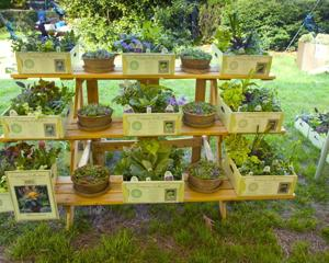 56th Annual Plant Sale