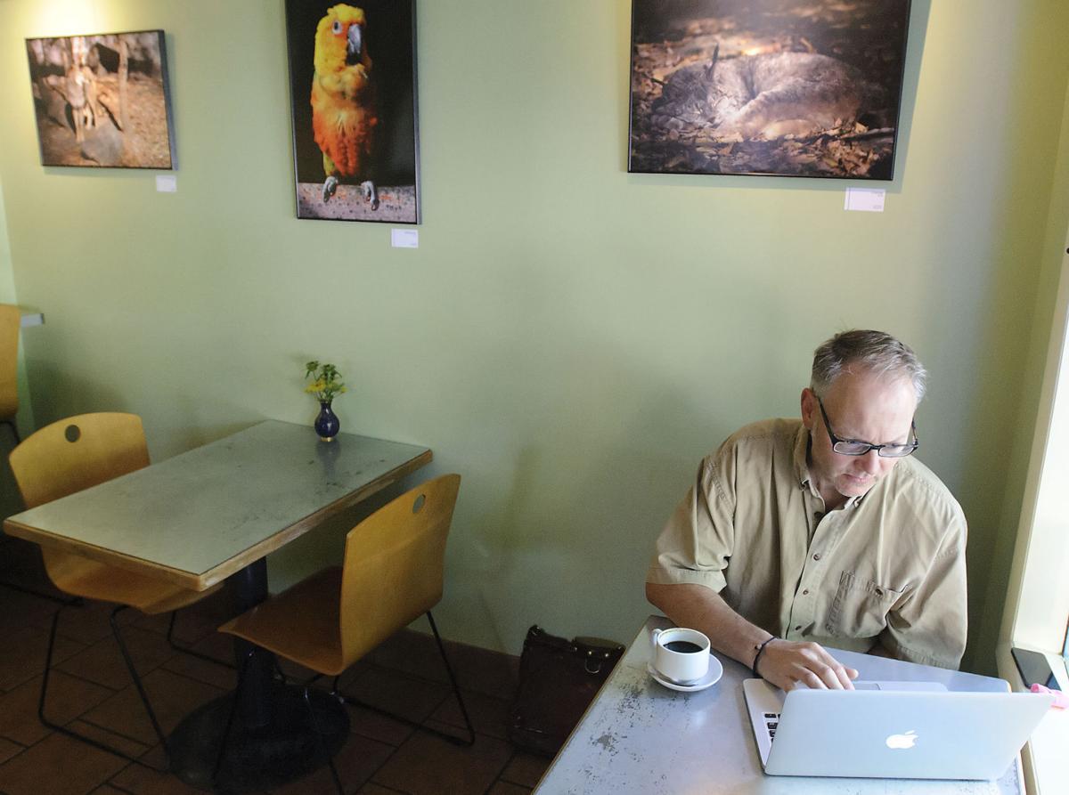 Caffe Ibis