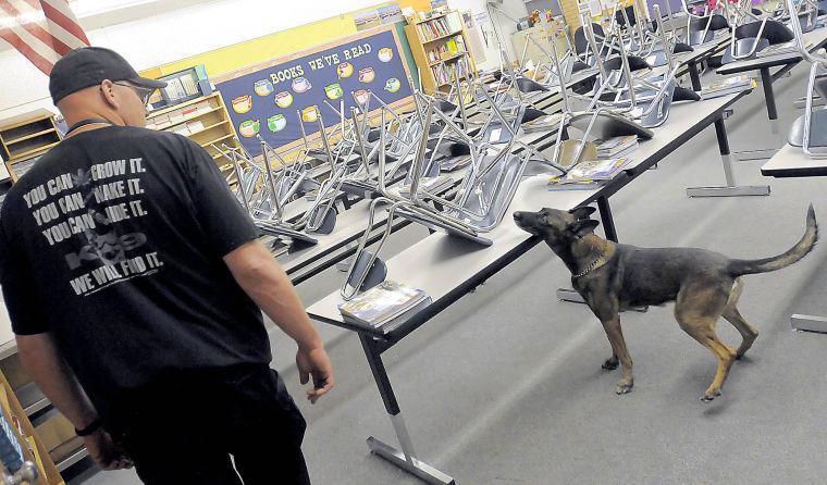 Dog Training In Logan Utah
