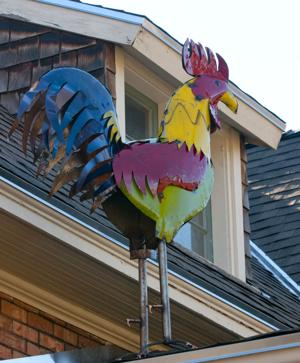 <p>A large rooster is seen perched on the roof of John Harder's Logan home on Tuesday afternoon. (John Zsiray/Herald Journal)</p>