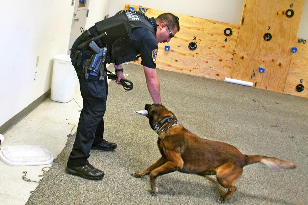 police dogs and handlers share a special bond local news