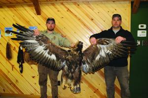 0221 Eagle::1