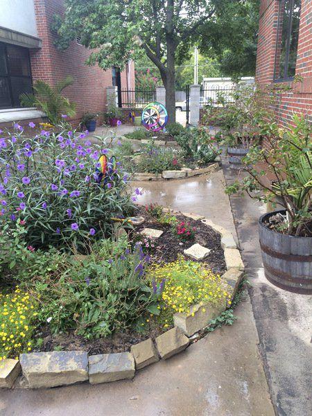 longfellow middle school opens a new sensory garden