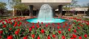 Center For Visual &amp; Performing Arts