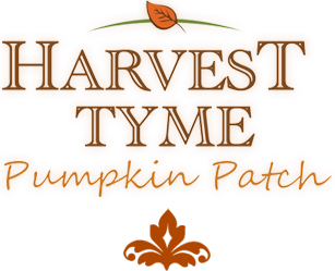 Harvest Tyme Pumpkin Patch