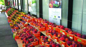 Strack & Van Til Food Markets invite the community to support local family farms
