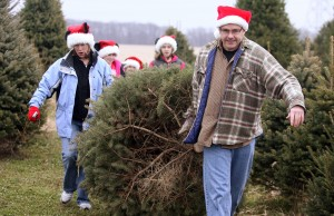 Christmas tree farms offer holiday spirit, tradition