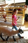 4-H'ers 'sold' on fair