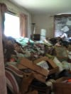 Cleanup of Hobart hoarder's house/farm begins 
