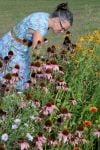 Volunteers and native plant gardeners recognized at Shirley Heinze Land Trust event