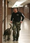 Police K-9s sweep Portage High 