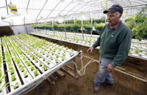 Economist challenges idea of aging farmer crisis