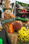 Lansing Autumn Fest returns to Fox Pointe