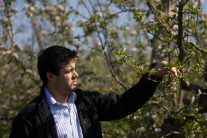 Apple trees blossom early, spurring some concerns among region orchards