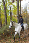 Equestrian Ethos: The world of horse lovers brings year-round joy