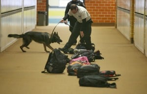 Police canines make sweep through Portage High School
