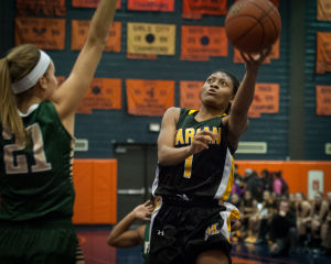 Marian Catholic falls to Fremd