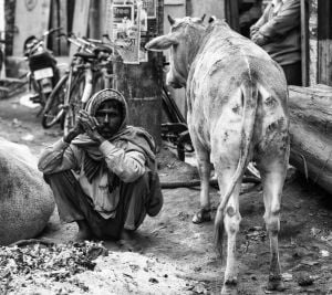 Photographer's work reflects life in India