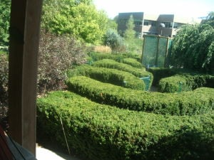 Natural Remedy: Healing gardens offer benefits for the body and mind