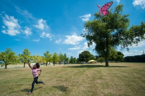 Kite fly to benefit cancer cause