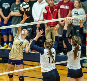Gavit falls to New Prairie in 3A volleyball regional