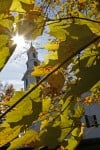 Scientists seek to document later fall colors