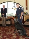 Giffith police launch K-9 patrol