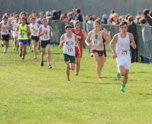 LaPorte's Didion finishes fourth at boys state cross country finals