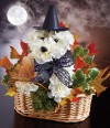 Halloween a-DOG-able Collection Arrangement by 1-800-FLOWERS.com