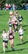 Chesterton cross country sectional