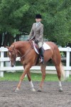 Young equestrian takes top prizes