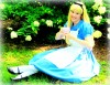Join Alice for 'Tea in Wonderland'