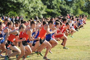 Lancioni, Didion, LaPorte dominate at Bob Thomas Invitational