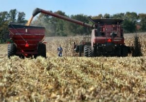 Farmland values notch another dramatic rise