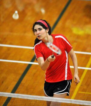 IHSA state badminton