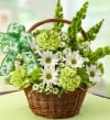 1-800-FLOWERS.com St. Patrick's Day Flower Basket