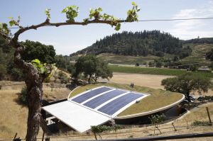 Living roofs take root in wine country