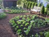Ellen Ogden's Kitchen Garden