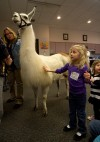 Llama's visit makes Valpo library story time a breed apart