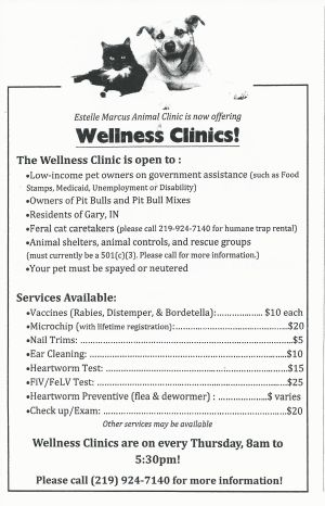 Pet Wellness Clinic