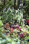 Munster club hosts garden walk