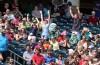 Baseball fans cheer
