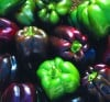Heirloom veggies deliver flavor, authenticity