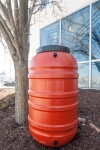Rain Barrel