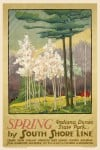 'Spring at The Indiana Dunes'