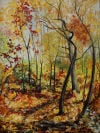 'Ben's Path' by Lyn Wellsand
