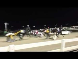 Harness racing at Balmoral Park