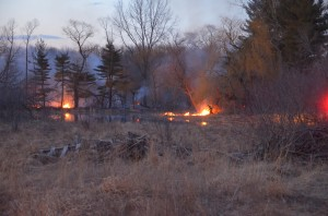 Fire departments work to put out brush fire